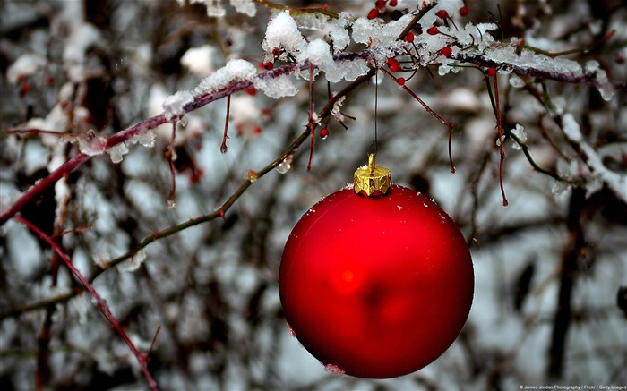 Bright red ornament-November 2015 Bing Wallpaper Views:815