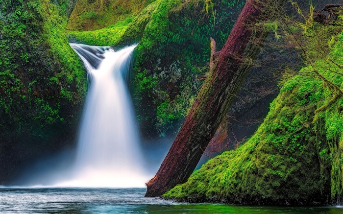 Falls river gorge oregon-Travel HD Wallpaper Views:2273