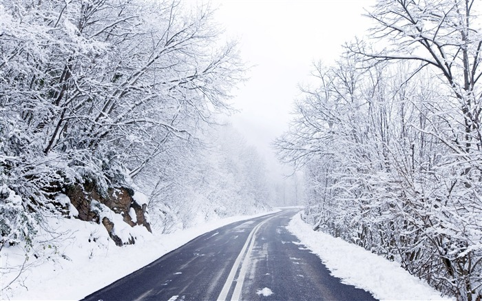 Forest cold winter road-2015 Landscape Wallpaper Views:1820