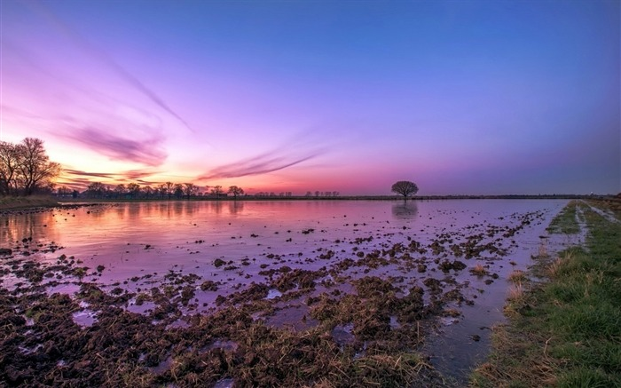 Muddy lake nature purple sky-Travel HD Wallpaper Views:1708
