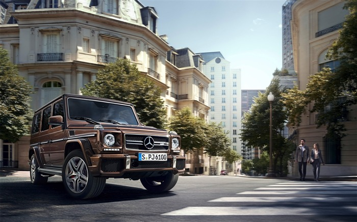 2016 Mercedes-Benz G-Class Auto HD Wallpaper 10 Views:4631 Date:1/26/2016 8:16:26 PM