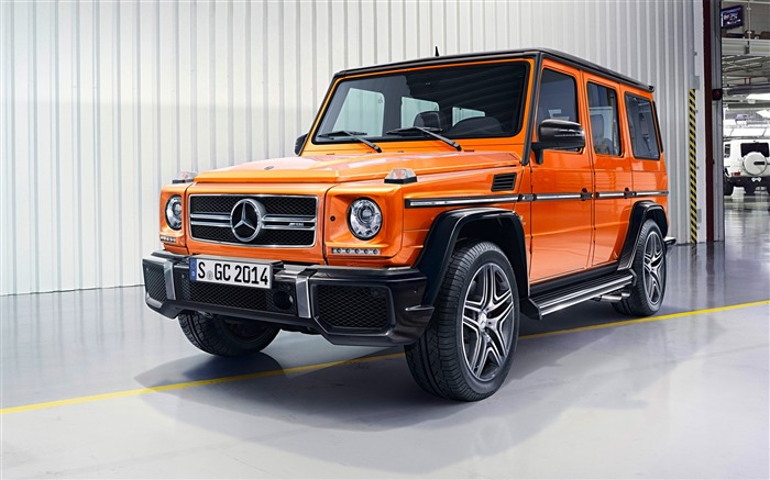 2016 Mercedes-Benz G-Class Auto HD Wallpaper 16 Views:2817 Date:1/26/2016 8:19:18 PM