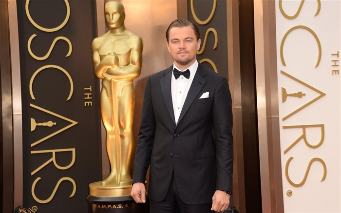 Leonardo Dicaprio 88th Academy Awards Theme Wallpaper Views:3027