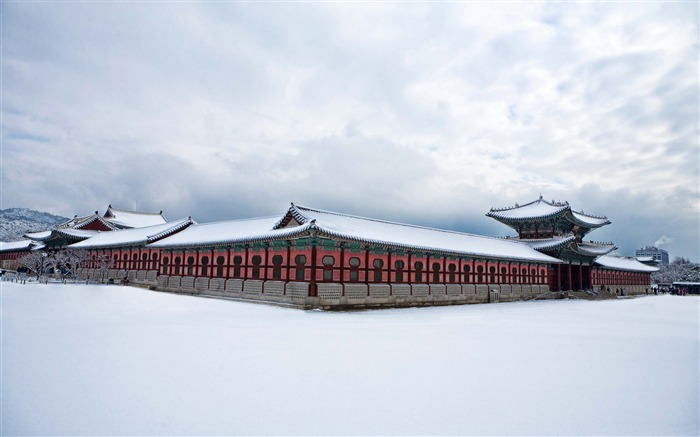 Gyeongbokgung palace winter-High Quality Wallpaper Views:1944