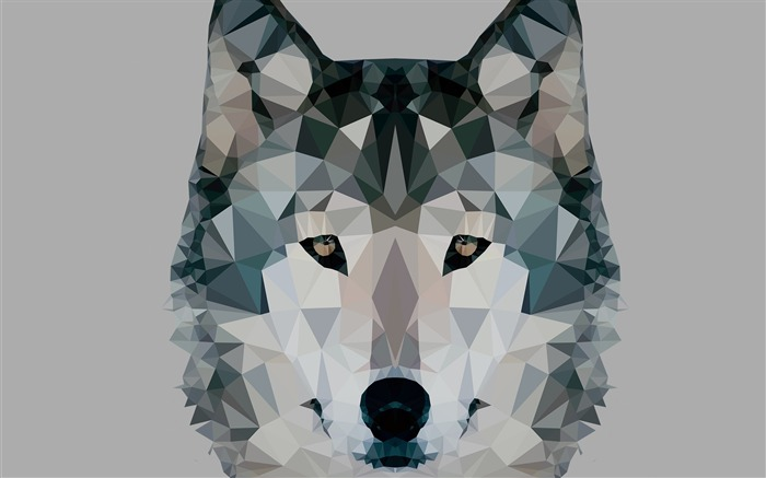 Low polygonal wolf-Vector Art Design HD Wallpaper Views:3100