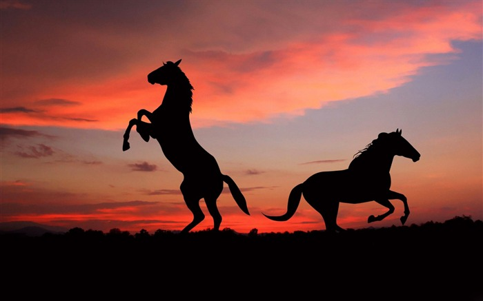 Horse silhouette shadow sunset-Grassland animal HD Wallpaper Views:2312