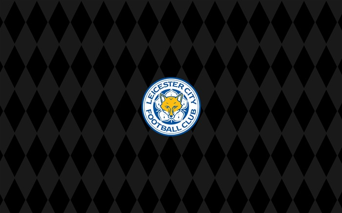 Leicester City Football Club Champions HD Wallpaper 07 Views:6990 Date:5/3/2016 7:12:49 AM