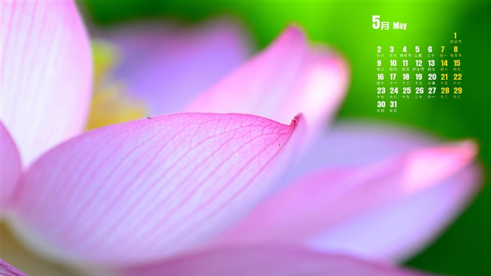 May 2016 Calendar Desktop Themes Wallpapers Views:7764