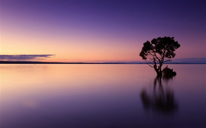 Purple calm ocean dusk-Nature Scenery HD Wallpaper Views:2478
