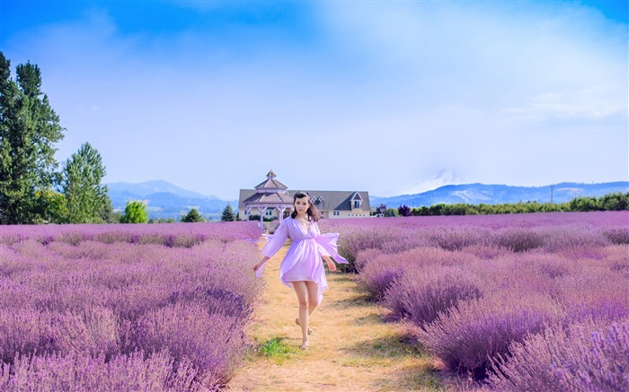 Girl Summer Outdoor Lavender Field-2016 High Quality HD Wallpaper Views:1729