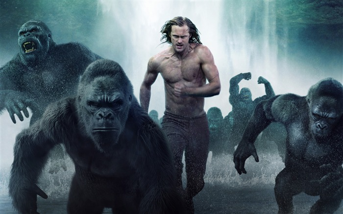 The legend of tarzan 2016-Movies Posters HD Wallpaper Views:1668