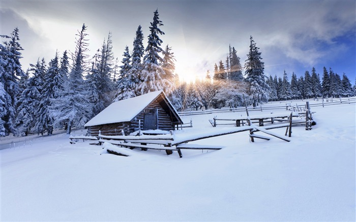 Winter forest mountain sun snow-nature HD photo wallpaper Views:1412