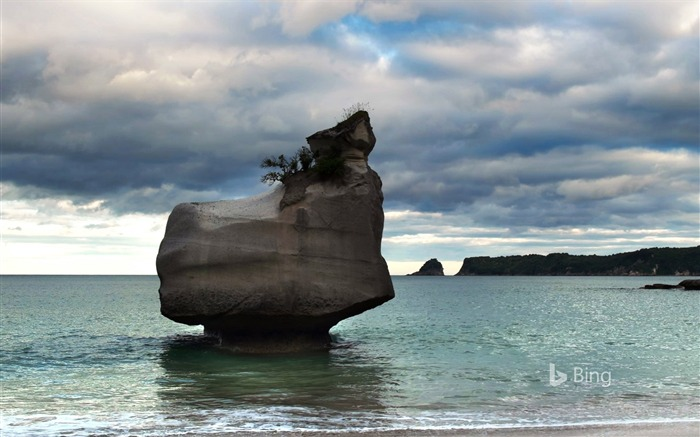 New Zealand Cathedral Cove-2016 Bing Desktop Wallpaper Views:1467