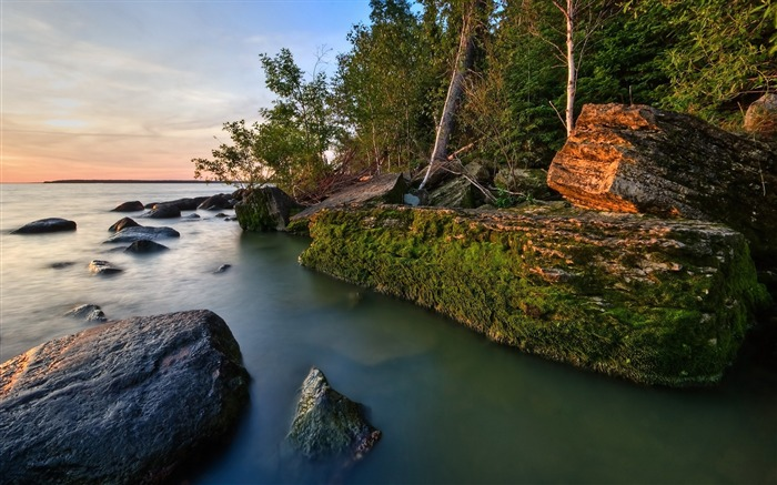 Rocks coast moss water trees-Landscape Theme Wallpaper Views:1835