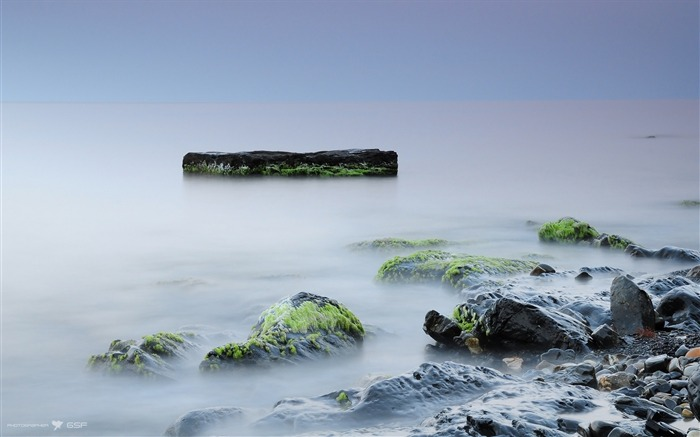 Stones moss rocks silence fog-Scenery High Quality Wallpaper Views:687