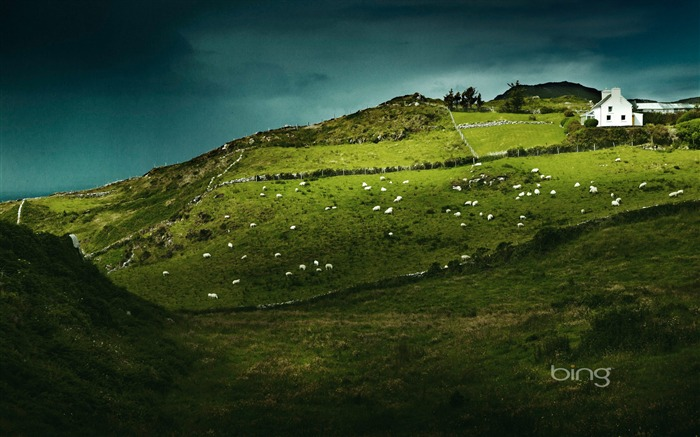 Sheeps Head Ireland-2016 Bing Desktop Wallpaper Views:1280