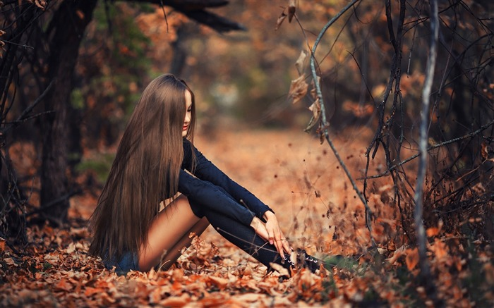 Girl Autumn Forest-2016 High Quality HD Wallpaper Views:1315