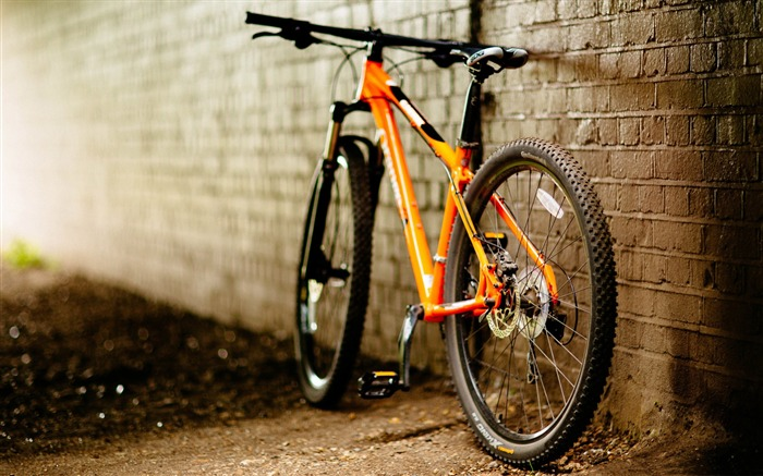 Bicycle close up-2016 High Quality HD Wallpaper Views:1580