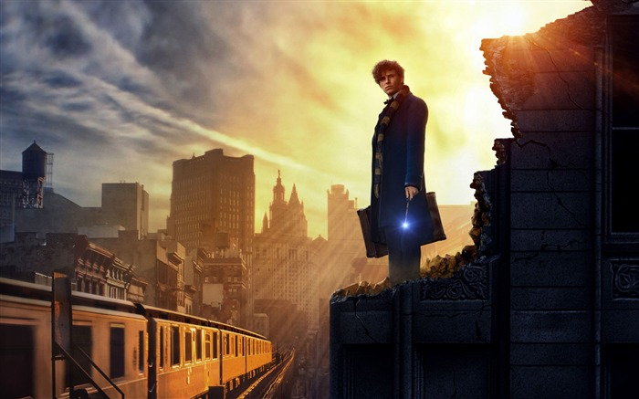 Fantastic beasts and where to find them-2016 High Quality HD Wallpaper Views:1743