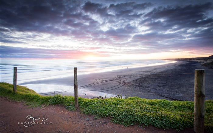 brian lai photography muriwai beach-2016 Windows 10 Desktop Wallpapers Views:1585