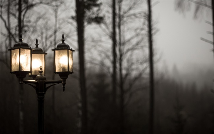 Street lamp on a gloomy day-2016 High Quality Wallpaper Views:869