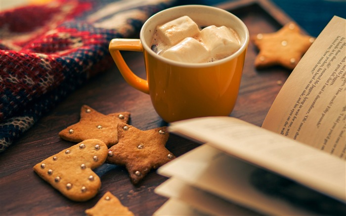 Winter Cocoa Cup-2016 High Quality Wallpapers Views:1754