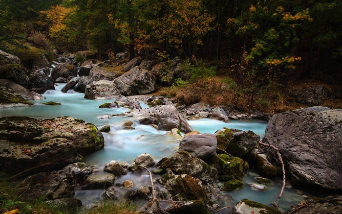 Forest stream rivers-Nature High Quality HD Wallpaper Views:2085