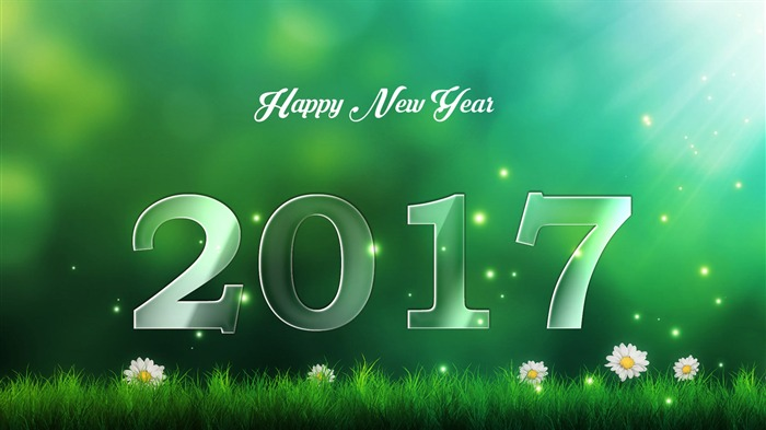 Happy New Year 2017 HD Theme Desktop Wallpaper 18 Views:951