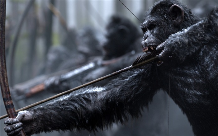 War for the planet of the apes-2017 Movie HD Wallpaper Views:3581 Date:1/1/2017 2:03:47 AM