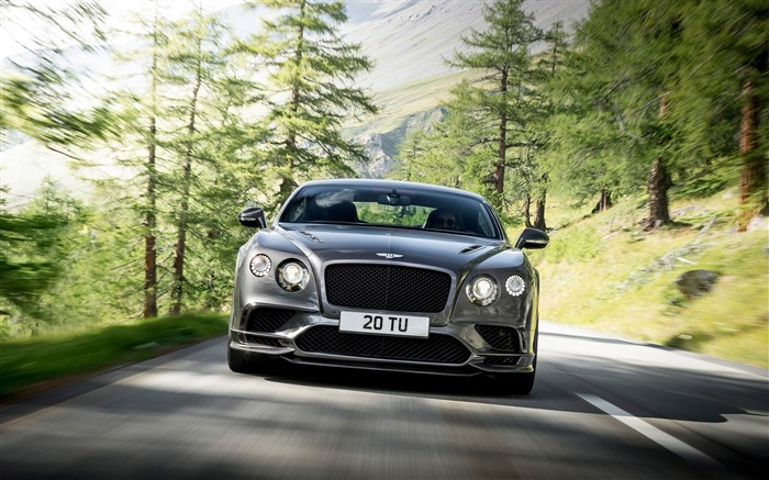 2017 Bentley Continental Supersports HD Wallpaper 11 Views:1466
