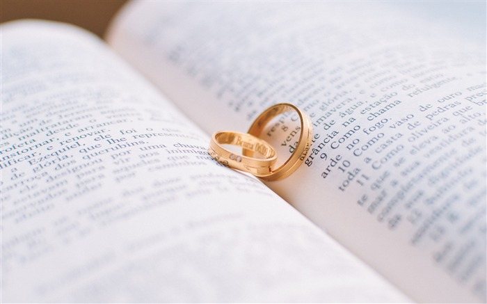 Love rings wedding bible-Valentine 2017 HD Wallpaper Views:6933 Date:2/2/2017 8:12:36 AM