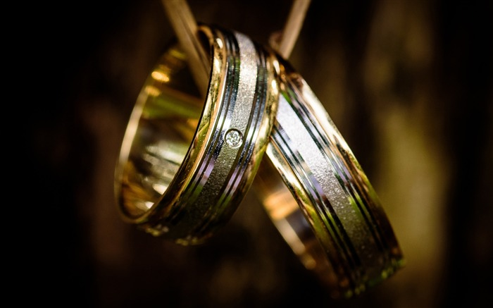 Silver and gold couple ring-Life Close-up Photo HD Wallpaper Views:1099