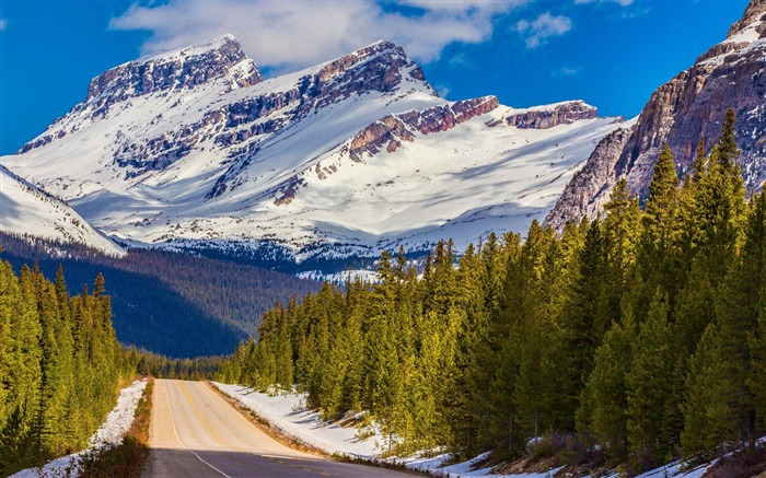Banff national park snowy mountains-Nature Scenery Wallpaper Views:1859