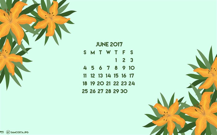 Flower Of Adversity-June 2017 Calendar Wallpaper Views:1285
