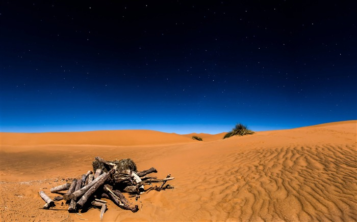 Sahara desert-2017 High Quality Wallpaper Views:958