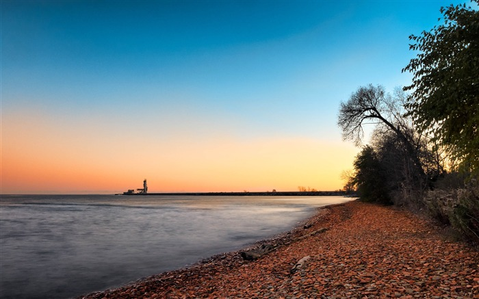 Trees on shoreline under blue sky-Scenery High Quality Wallpaper Views:1981 Date:5/24/2017 5:16:50 AM