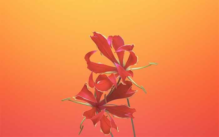 Gloriosa-Apple iOS 11 iPhone 8 iPhone X HD Wallpapers Views:968