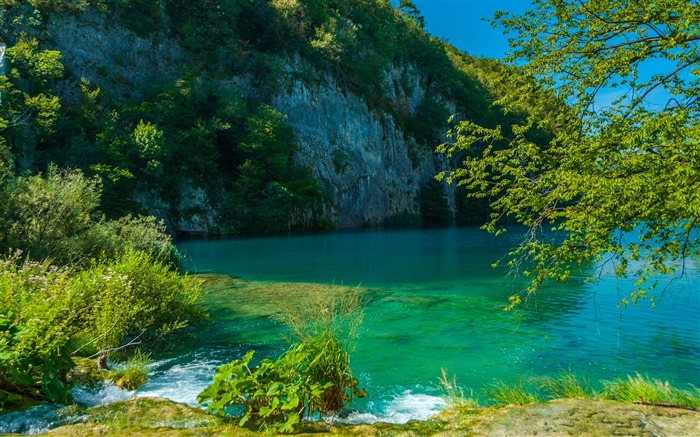 Lake in plitvice-2017 High Quality Wallpaper Views:530
