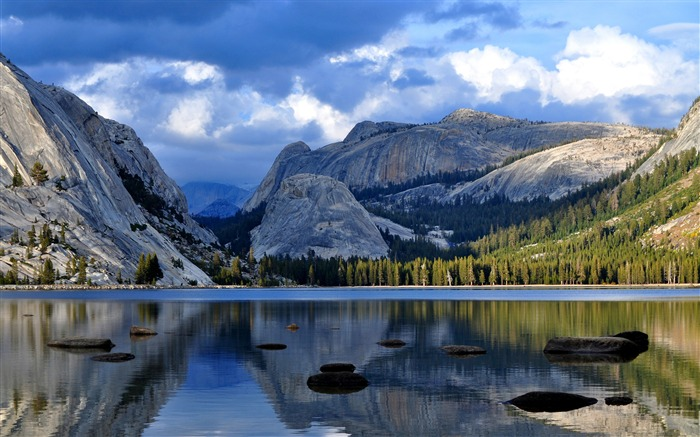 Yosemite national park forest 2017 HD Wallpaper Views:351