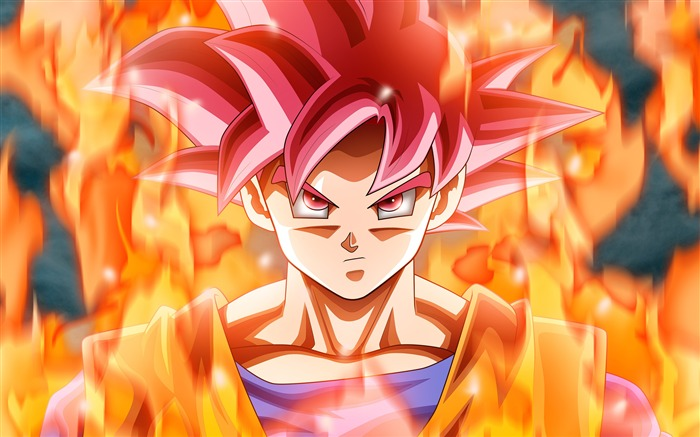 Dragon Ball Animation Characters 4K Ultra HD Views:21638