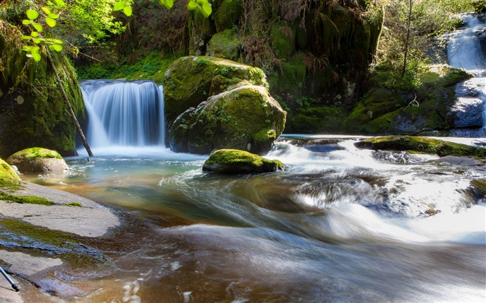Waterfall river flow forest moss rocks 4K HD Photo Views:424