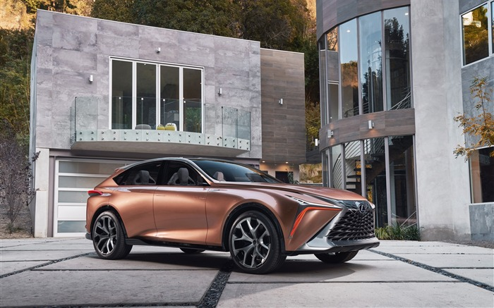 2018 Lexus LF-1 Limitless Concept Car Views:6415