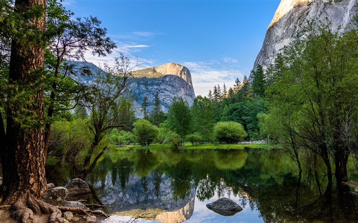 Yosemite National Park Mirror Lake Views:1472