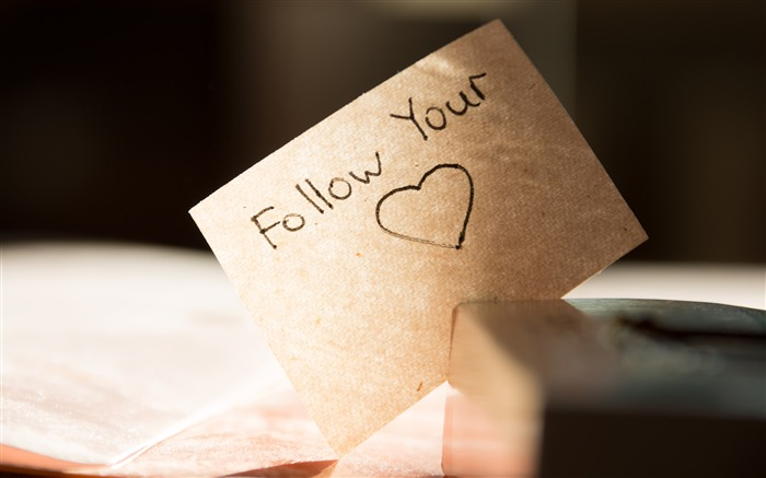 Follow Your Heart Romantic Love Paper Views:3192 Date:5/8/2018 9:01:01 AM