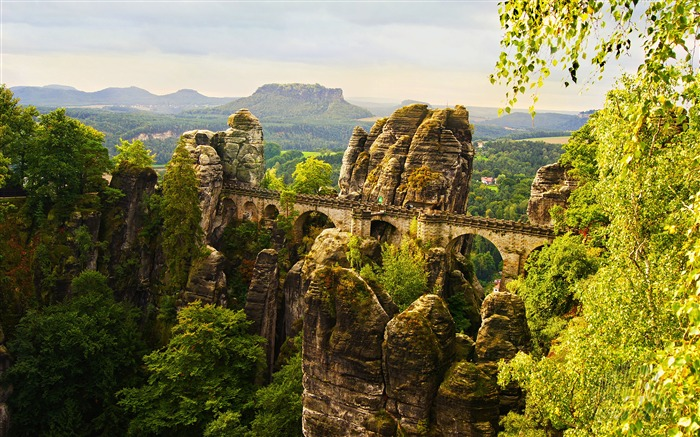 Germany Parks Stone Bridges Green Jungle Views:4732 Date:5/20/2018 8:07:01 AM