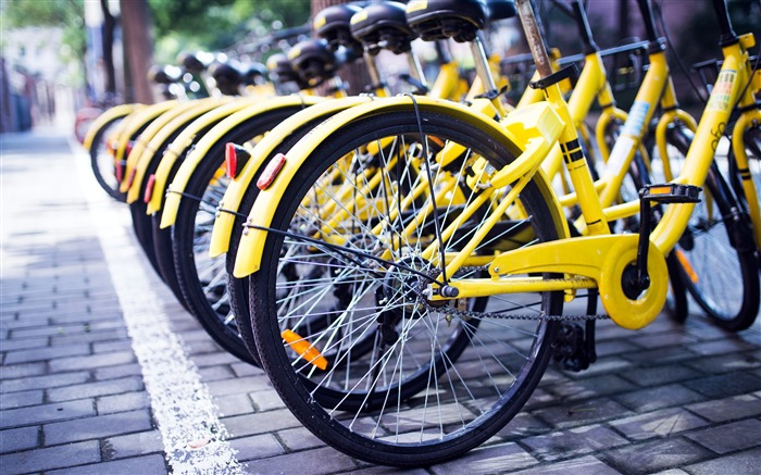 China Internet OFO shared bicycle photos Views:1138 Date:8/6/2018 9:45:44 AM
