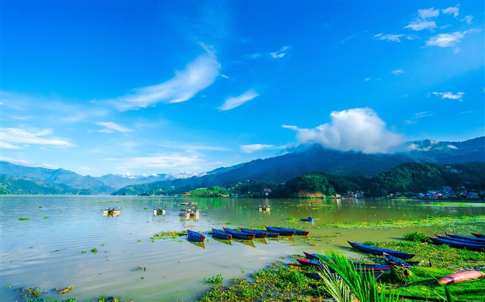 Spring Nepal Green Fewa Lake Blue sky Views:5102 Date:8/3/2018 12:39:44 AM