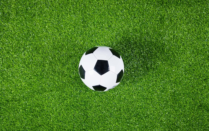 Green grass soccer field football closeup Views:3042 Date:9/17/2018 3:17:32 AM