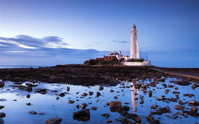 St Marys Lighthouse UK 2020 Scenery HD Photography Views:1567 Date:5/7/2020 6:46:01 AM