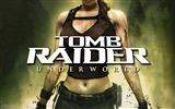 Title:Tomb Raider 8 Underworld wallpaper Views:6385